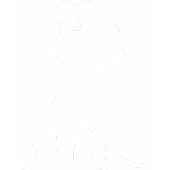 Pasadena Dance Academy Paartanze